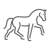 Icono caballo